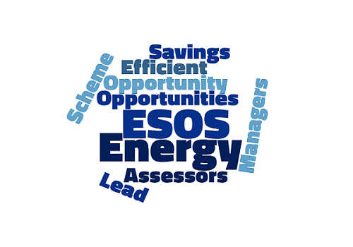 ESOS wordcloud smaller   Energy Managers Association
