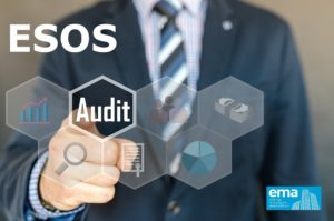 Esos Audit