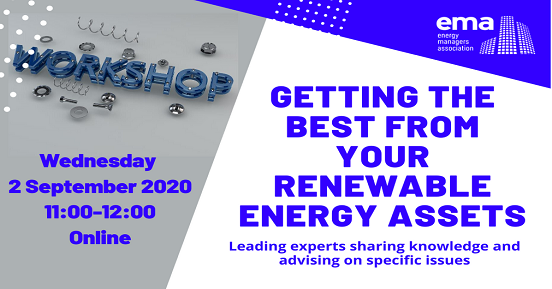 The Best From Your Renewable Assets Workshop V3 552x289