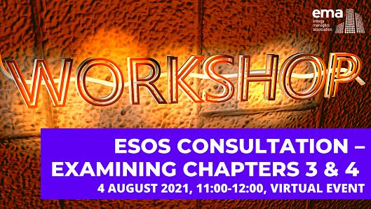 Esos Consultation Ch 3&4 Workshop 529x289
