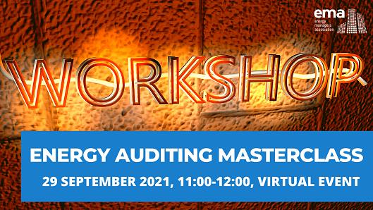 Auditing Ema Workshop 092021 529x289
